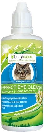 Augenreinigung Katze